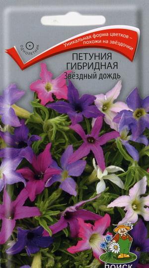 16068_petunia_zvezdnyi_dozd