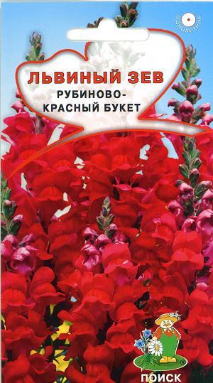 10481_lvinyi_zev_rubin_buket
