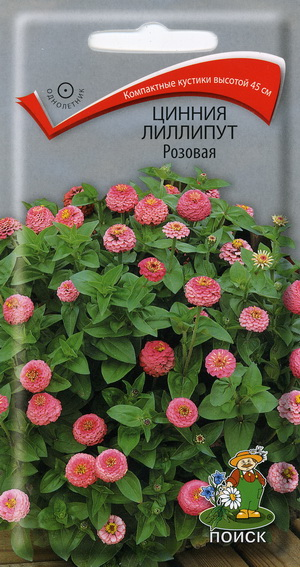 13146_tsinnia_rozovaja