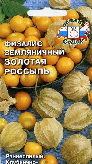 15048_fizalis_zolotaja_rossyp