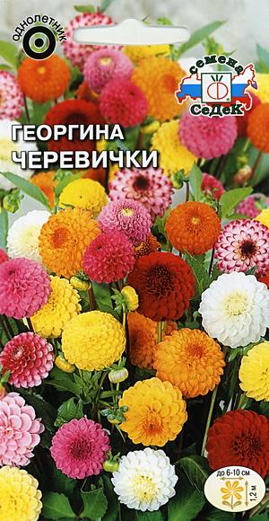 16509_georgina_cherevichki